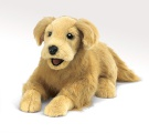 Golden Retriever Puppet - Folkmanis (2998)
