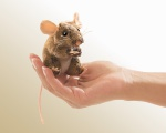 Mini Field Mouse Finger Puppet - Folkmanis (2652)