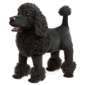 Poodle Hand Puppet - Folkmanis (3095)