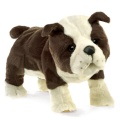 English Bulldog Puppy Puppet - Folkmanis (3111)