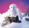 Owl, Snowy Puppet - Folkmanis (2236)